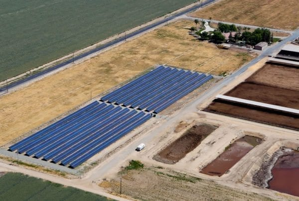 coldwell-solar-dg-farms
