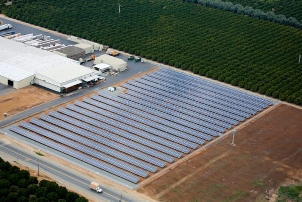 Coldwell-Solar-Villa-Park-Orchards-Association